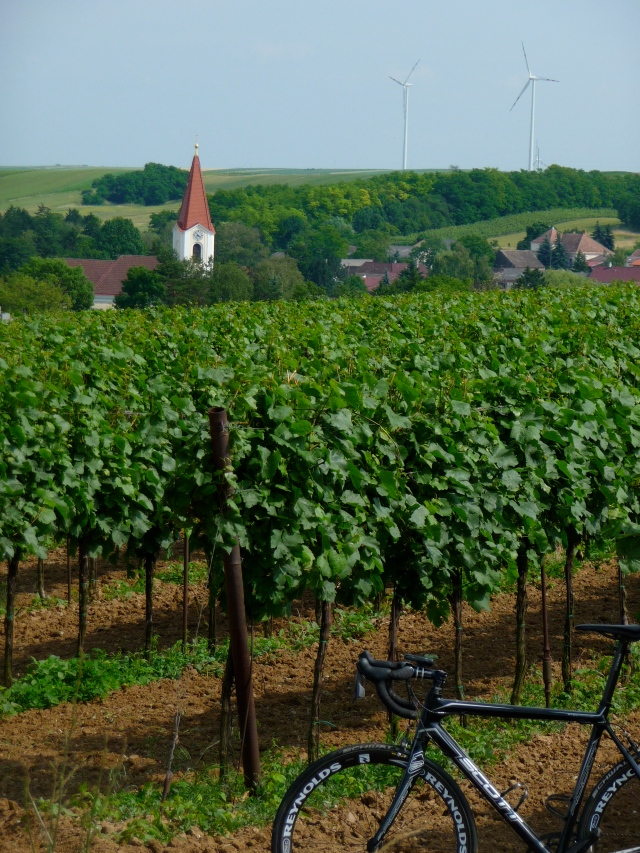 Austrian Vineyards