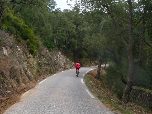 Cofidis Rider